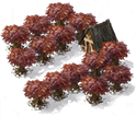 Icon Orchard.png