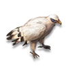 Poe2 pet white bird icon.png