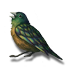 Songbird shardwing icon.png