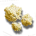 Pilgrims crown icon.png