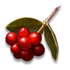 Poe2 ryngr berries icon.png