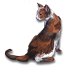 Poe2 pet backer cat Gosha icon.png