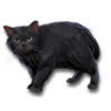 Poe2 pet backer cat Epsilon icon.png
