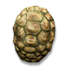 Poe2 shield medium shell icon.png