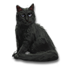 Poe2 pet backer cat Corlagon icon.png