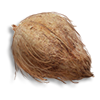 Poe2 palm stone icon.png