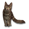 Poe2 pet backer cat Bonnie icon.png