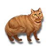 Pet orange cat icon.png