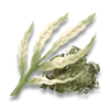 Poe2 whiteleaf icon.png