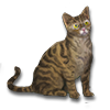 Poe2 pet backer cat Lil Babs icon.png