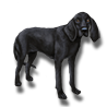 Pet black hound icon.png