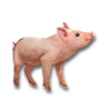 Poe2 pet backer pig Ginger Esry icon.png
