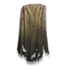 Poe2 cloak ragged icon.png