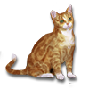 Poe2 pet backer cat Milx icon.png