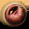 Beast of Omen Eye Ingredient icon.png