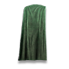 Poe2 cloak green icon.png