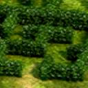Stronghold hedge maze bonus.png