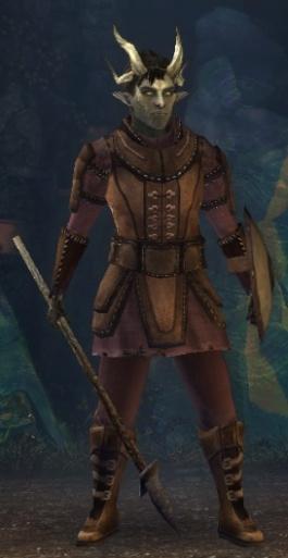Leather-armor.jpg