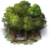 Icon Trees.png