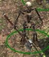 Skeletal-fighter.jpg