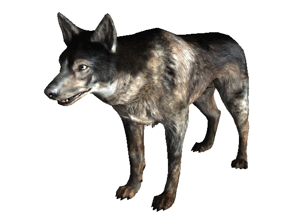 Dog Fallout New Vegas The Vault Fallout Wiki