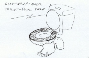 Glad Wrap Trap.jpg
