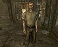 Fallout3 2009 Gob.jpg