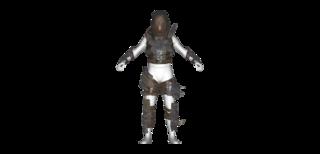 DLC04 Armor Disciples Heavy01 A Full.png