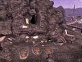Cuckoos Nest.jpg