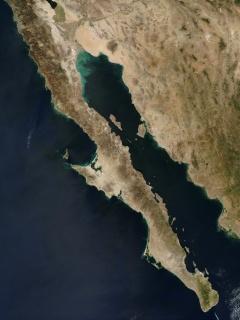 Baja Peninsula Satellite.jpg