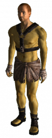 Tattered Slave Outfit.png