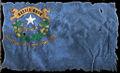Docs flag.jpg