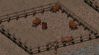 Fo2 Penned Brahmin.png