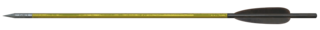 F76 Crossbow bolt.png