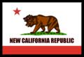 NCR Flag.png