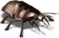 VB DD12 creat Cockroach.jpg