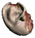 Player's ear.png
