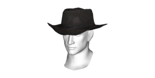 DLC04 Armor Western Hat 02a.png