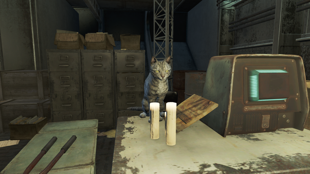 Cat The Vault Fallout Wiki Everything You Need To Know