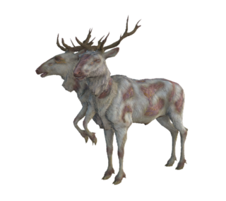 Radstag03.png