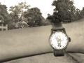 Vault Boy Watch.png