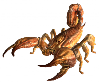 Bark scorpion FNV.png