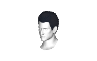 ElvisHair.png