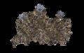 HubflowerPlant.png