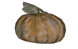 FO4Gourd.png