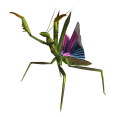 Giant mantis nypmh.png