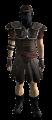 Nv-legion-armor.png