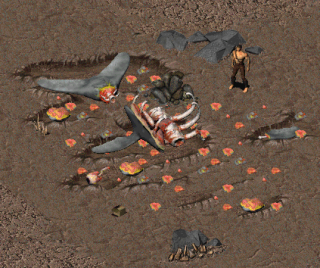 Crashedwhale.png