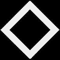 Diamond City security.png
