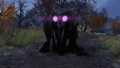 F76 Wise Mothman.png